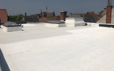 De strijd tegen opwarming (hitte-eilandeffect) via witte daken